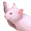 TheDogWood's avatar
