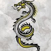 TheEtherealDragon's avatar