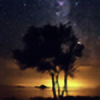 TheEvergreenShadow's avatar