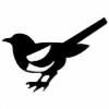 TheFlyingMagpie's avatar