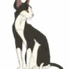 TheFrenchGoldfish's avatar