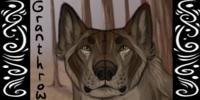 TheGranthrow's avatar