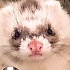 TheHatsMystery's avatar