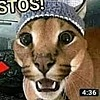 Thelizardpop's avatar
