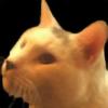 thellt's avatar