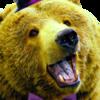 TheLordBreadbear's avatar