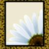 TheMaddPoetess's avatar