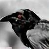 TheNightfallCrow's avatar