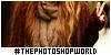 thephotoshopworld's avatar