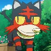 ThePokectCat's avatar