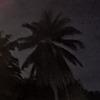 TheRandomDinoMan's avatar