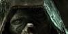 thesayinsclub's avatar