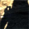 TheStealthNinja13's avatar