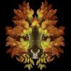 TheVerdantHare's avatar