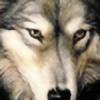 thewolftamer5790's avatar