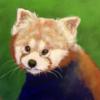 TheWonderB0t's avatar