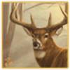 TheZooTycooner14's avatar
