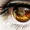 Thr0ugh-My-EyeZ's avatar