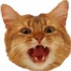 Thrashcatt's avatar