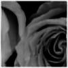ThreeDaysLost's avatar