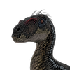 Thylacon's avatar