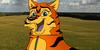 Tiger-Aleu's avatar