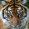 tiger2plz's avatar