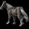 TigerDun's avatar