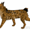 TigerGirl4353's avatar
