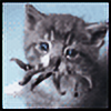 Tiki83's avatar