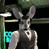 timberfox15's avatar