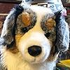 Timewolfplushies's avatar