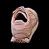 timsfraud's avatar