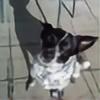 tingivinki's avatar