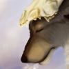 Tirramirr's avatar