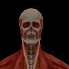 TitanRipper's avatar