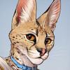 TitusWeiss's avatar