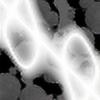 Tjbrody's avatar