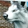 tkdchamp02's avatar