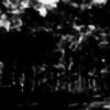 Tkimcarolina's avatar