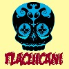 TlacuicaniS's avatar