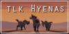 TLK-Hyenas