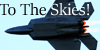 To-The-Skies's avatar