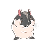 Toddiie's avatar