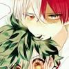 tododeku1108's avatar