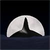 TokloFan11's avatar