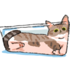 Tolon-Fii's avatar