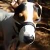 toloveastray's avatar