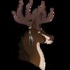 Tomaleck's avatar