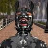 Tomasina1's avatar